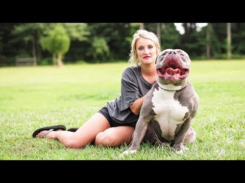 Mississippi Mom Is The 15 000 Pit Bull Queen