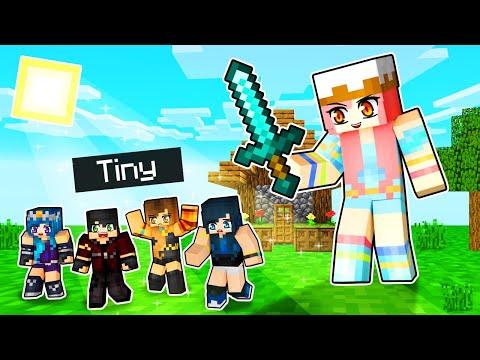 We re TINY Minecraft Players