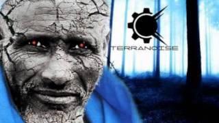 Terranoise - Vitamin T