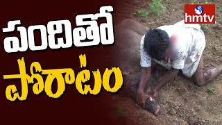 Farmer Vs Pig | ప్రాణాలకు తెగించి అడవి పందితో పోరాడిన రైతు | Real Baahubali | hmtv