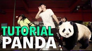 PANDA - Desiigner (Dance TUTORIAL) | @MattSteffanina Choreography