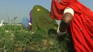Many Pakistani Girls Forcibly Converted To Islam