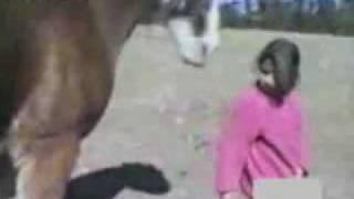Horse Bites Girls Hair