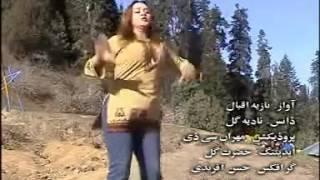 Pashto new hot dance nadia gul sexy 2016