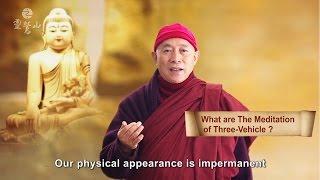 Quick Know Chan(Zen) Meditation - Chan Master Hsin-tao Talks On Early Buddhist Meditation