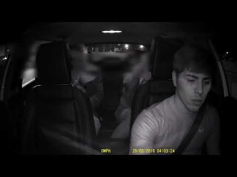 Xxx Mp4 Uber Passenger Gives Blowjob In Backseat 3gp Sex
