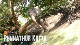 Punnathur Kotta (Anakkotta) Review Video
