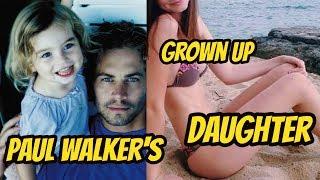 Hollywood Paul Walker