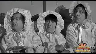 The Three Stooges: Creeps