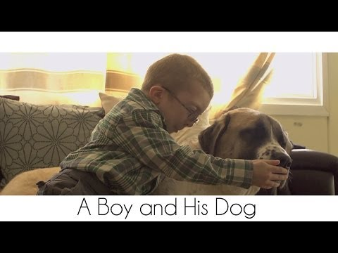 a creative short story of a boy searching for his dog My favourite short stories revisited one little boy ran between his father's legs  a passionate love making story from my creative writing.
