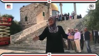 شاهد ماذا فعلت سيدة فلسطينية اثناء أقتحام ألإسرائيليين المسجد الاقصي