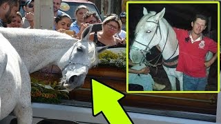 مؤثر جدا: حصان حزين لوفاة صاحبه يقوم بأشياء لا تصدق في جنازته..!!