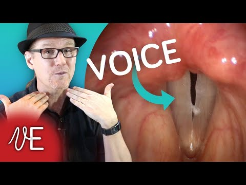 Xxx Mp4 Vocal Cords In ACTION Video How The Human Voice Works DrDan 🎤 3gp Sex