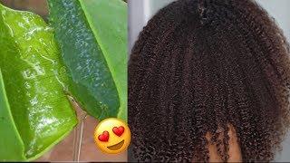 FRESH ALOE VERA GEL Mask for Natural Hair | Healthy Hair Growth!