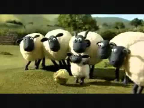 shaun the sheep off the baa خروف شون ذا شيب رائع