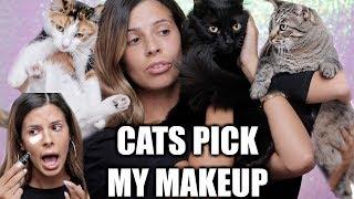 MY CATS PICK MY MAKEUP
