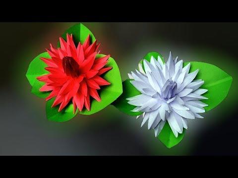 Xxx Mp4 কাগজ দিয়ে শাপলা ফুল বানানো শিখুন How To Make Water Lily With Paper 3gp Sex