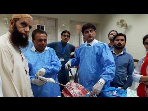 Pleuroscopy Procedure || Medical Thoracoscopy Training || Hands-on Workshop || Pleuroscopy Video