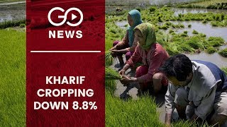 Kharif Sowing Down