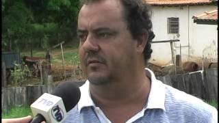 Criação de Galinha Angola na região de Mococa - TV Direta