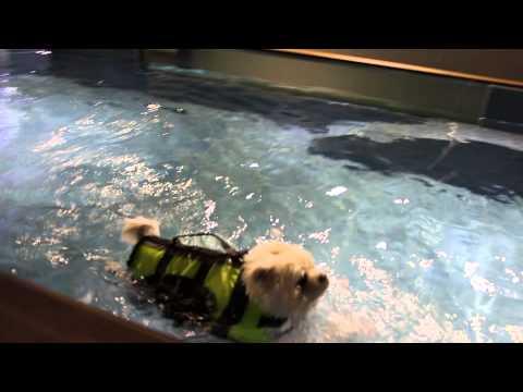 2013 05 24 QQ 1st Swimming