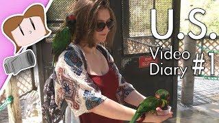 Butterflies & Birds   U.S. Video Diary