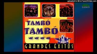 TAMBO TAMBO 20 GRANDES EXITOS - CUMBIA DEL RECUERDO