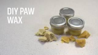 DIY Dog Paw Wax Recipe
