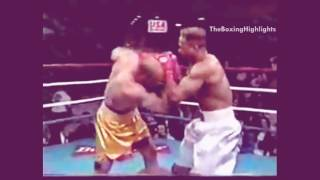 5 Fastest Knockouts in Boxing History