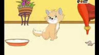 meow meow cat bole kisko khao.3gp