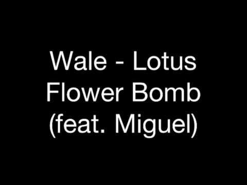 Wale lotus flower bomb ft miguel ambition album video download wale lotus flower bomb feat miguel audio mightylinksfo