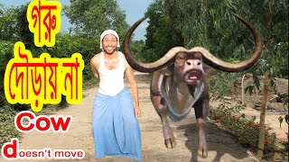funny cow videos Dr.Lony .Problem Goru douray na.Cow does not move.Bangla funny video by Dr.Lony ✔