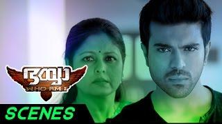 Bhaiyya My Brother Malayalam Movie Scenes | Ram Charan Climax Fight | Shruti Haasan | Jayasudha