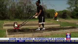 Share The Harvest : Warnersville's Garden