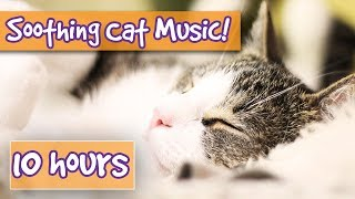 Soothing Music for Cats with Peaceful Sound Effects Including Purring to Calm Cat Anxiety and Stress