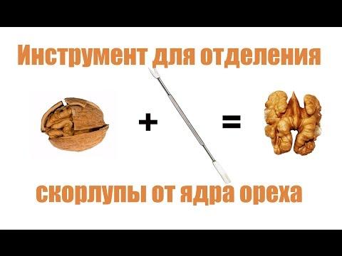Инструмент для отделения скорлупы от ядра грецкого ореха - youtube,youtuber,utube,youtub,youtubr,youtube music,unblock youtube,y