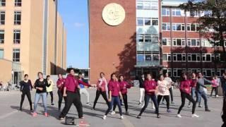 IDS Flashmob 2015-16