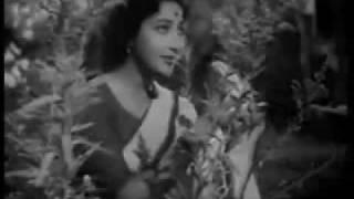 Rang Dil Ki Dhadkan Bhi Laati To Hogi Patang.