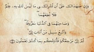 سورة لقمان بصوت سعد الغامدي