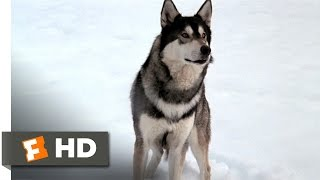 The Thing (1/10) Movie CLIP - The Norwegian Dog Hunt (1982) HD
