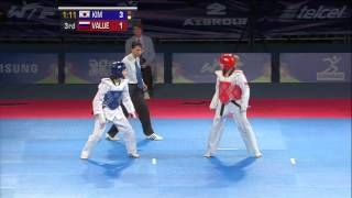 2013 WTF World Taekwondo Championships Final   Female -46kg