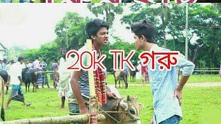 Bangla New Eid Funny Video | গরুর হাট | 2017 Ajob BoyZ