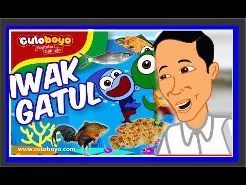 Culoboyo Baby Shark Versi Jawa Lagu Iwak Gatul Feat. Presiden Jokowi babysharkchallenge