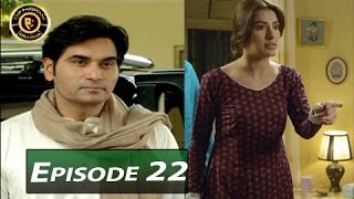 Dil Lagi Episode 22 - ARY Digital - Top Pakistani Dramas
