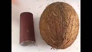 How To Make A Coconut Jewel-box 🥥😎.mp4