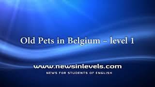 Old Pets in Belgium – level 1