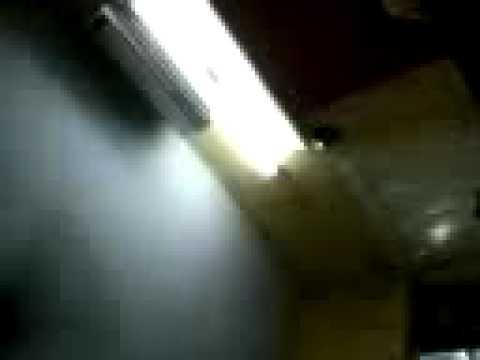 Xxx Mp4 Gupta Video 3gp Sex