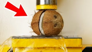 "Coconut VS Hydraulic Press - "" The Smasher Show """