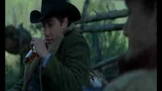 Brokeback Mountain Cowboy Dreams