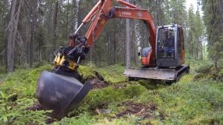 Forest ditch clearing